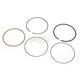 Piston Rings - 51-256-04