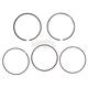 Piston Rings - 51-258-06