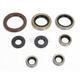 Oil Seal Kit  - 0935-0837