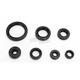 Oil Seal Kit  - 0935-0840