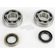 Main Bearing and Seal Kit - K236