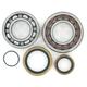 Crank Bearing/Seal Kit - 0924-0220