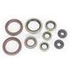 Complete Oil Seal Set - 0935-0543