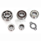 Transmission Bearing Kit - TBK0073