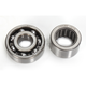 Counter Balancer Bearing Kit - BBK0017