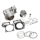 Rear Standard Bore Cylinder Kit - 30008-K01