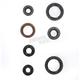 Engine Oil Seal Kit - 50-1049