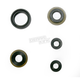 Engine Oil Seal Kit - 50-4045