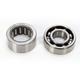 Counter Balancer Bearing Kit - BBK0002