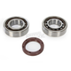 Crankshaft Bearings - K076