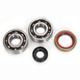 Crankshaft Bearings - K080