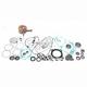 Complete Rebuild Kit - WR101-028