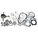 Complete Engine Rebuild Kit - WR101-061