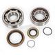 Crank Bearing and Seal Kit - 0924-0290