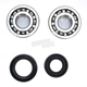 Crank Bearing and Seal Kit - 23.CBS13087