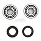 Crank Bearing and Seal Kit - 23.CBS22079