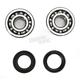 Crank Bearing and Seal Kit - 23.CBS22079