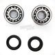 Crank Bearing and Seal Kit - 23.CBS22080