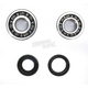 Crank Bearing and Seal Kit - 23.CBS22105