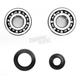 Crank Bearing and Seal Kit - 23.CBS23099