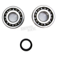 Crank Bearing and Seal Kit - 23.CBS24009