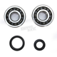Crank Bearing and Seal Kit - 23.CBS32089