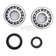 Crank Bearing and Seal Kit - 23.CBS33000