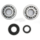 Crank Bearing and Seal Kit - 23.CBS33003