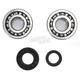 Crank Bearing and Seal Kit - 23.CBS33003