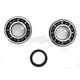 Crank Bearing and Seal Kit - 23.CBS33007