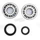 Crank Bearing and Seal Kit - 23.CBS33096