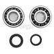 Crank Bearing and Seal Kit - 23.CBS34008