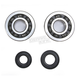 Crank Bearing and Seal Kit - 23.CBS43002