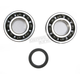 Crank Bearing and Seal Kit - 23.CBS43004