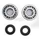 Crank Bearing and Seal Kit - 23.CBS43187