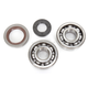 Crank Bearing and Seal Kit - 23.CBS61009