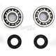 Crank Bearing and Seal Kit - 23.CBS61097