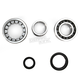 Crank Bearing and Seal Kit - 23.CBS63004