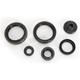 Oil Seal Kit - C3102OS