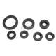 Oil Seal Kit - C3268OS