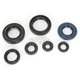Oil Seal Kit - C7093OS