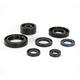 Oil Seal Kit - C7137OS