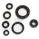 Oil Seal Kit - C7181OS