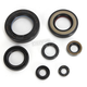 Oil Seal Kit - C7349OS