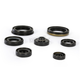 Oil Seal Kit - C7508OS