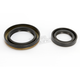 Crankshaft Seals - C7676