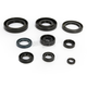 Oil Seal Kit - C7853OS