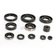 Oil Seal Kit - C7861OS