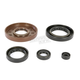 Oil Seal Kit - 0935-0820