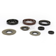 Oil Seal Kit - 0935-0821